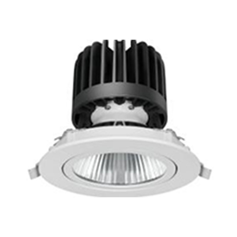 LED down light with adjustable head 520016 MAX 30W