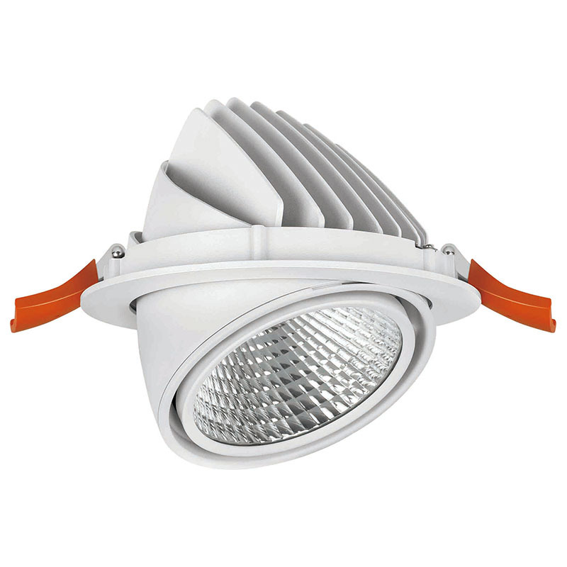 LED down light with flexible head 502021-3 MAX 50W