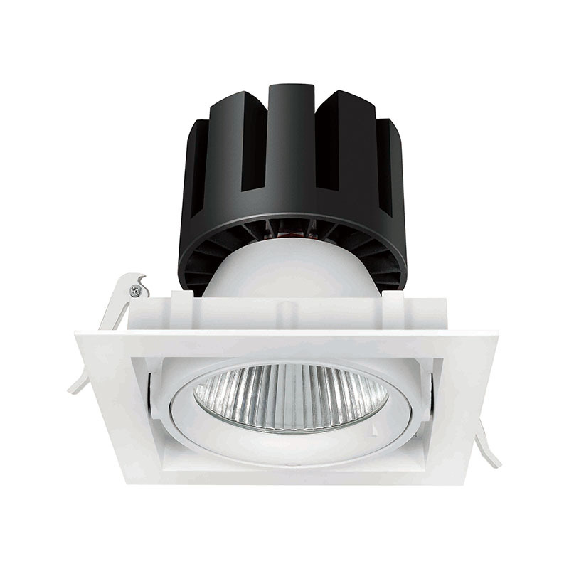 grille light recessed adjustable led downlights Seity Brand